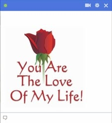 you are the love of my life facebook emoticon